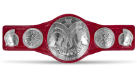Der RAW Tag Team Title Belt